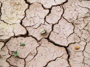 Der Klimawandel wird jene stärker treffen, die benachteiligt sind